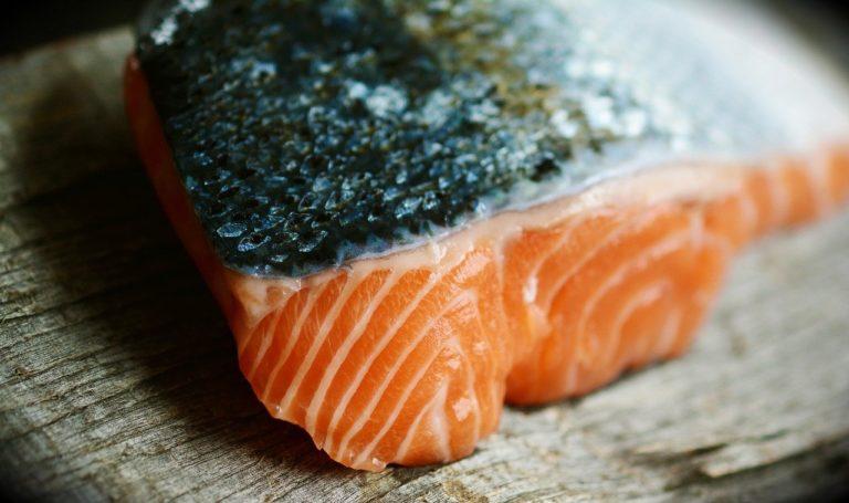チリ産養殖サーモンの危険性 〜陸で産まれた魚たち〜