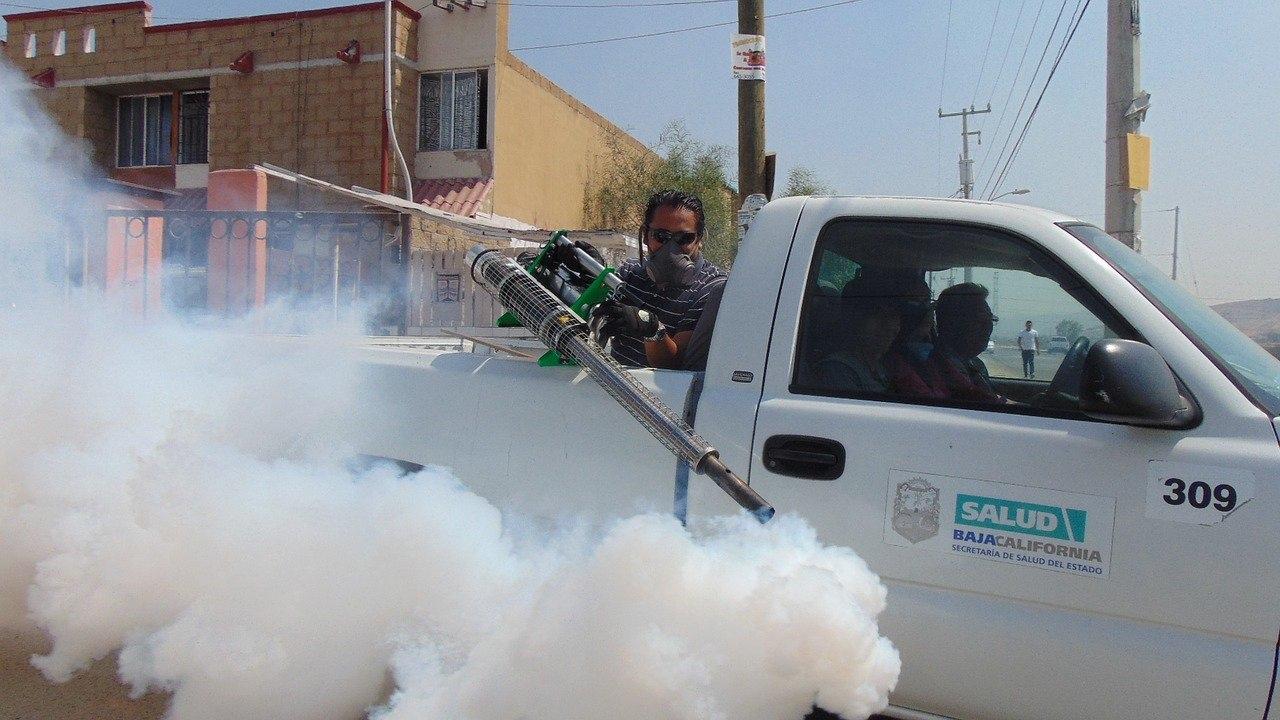 チリ産養殖サーモンの飼育には殺虫剤が必須!?