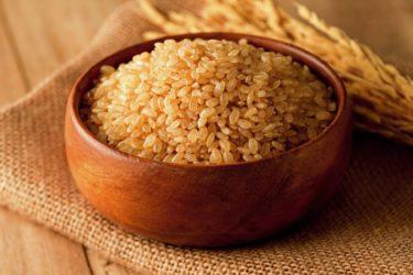 学校では絶対に教えてくれない裏の授業 〜お米の豆知識〜