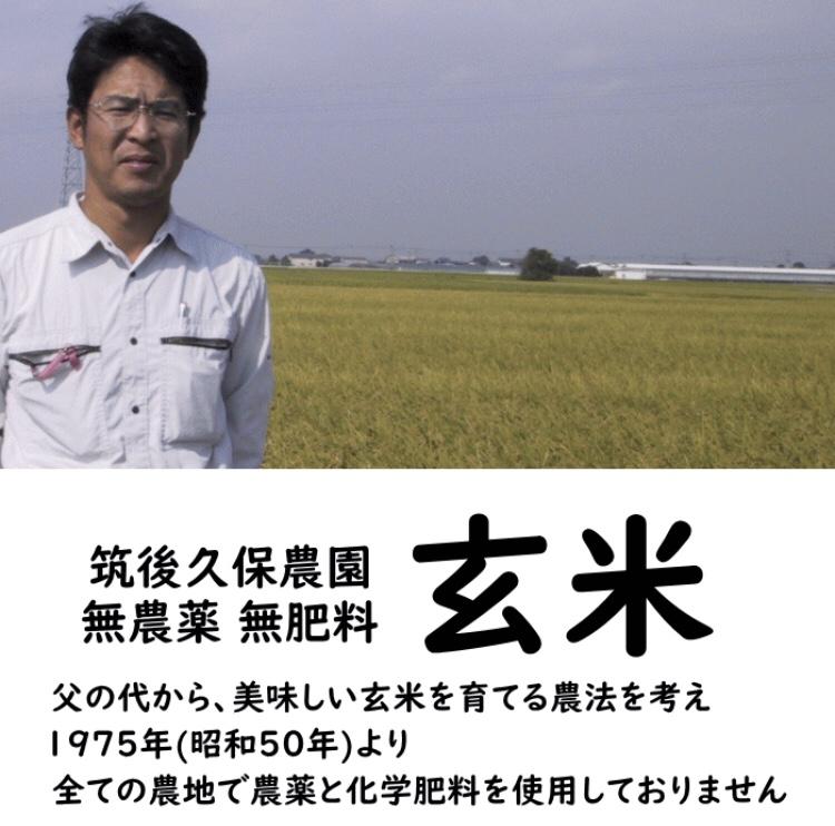 筑後久保農園の無農薬・無肥料栽培米