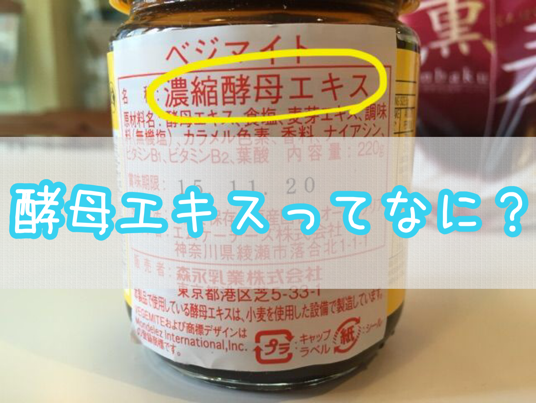 化学調味料の危険性④ 酵母エキス